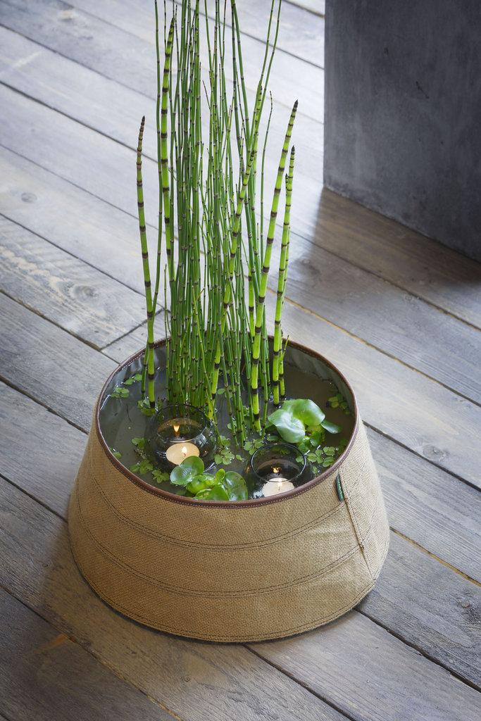 bassin int rieur trendy pond indoor naturel 30cm 5 litres. Black Bedroom Furniture Sets. Home Design Ideas