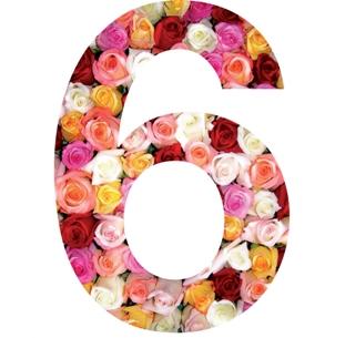 roses sticker chiffre pour la maison poubelle boite aux lettres. Black Bedroom Furniture Sets. Home Design Ideas