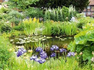 Bassin fleurie - Cadre-tableau déco jardin - LM30 Lifestyle