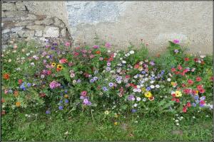 Jardin fleuri sticker poubelle lm30 lifestyle tenue for Deco jardin fleuri