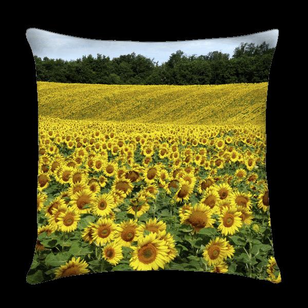 coussins d coratif pour le jardin ext rieur tenue d 39 jardin. Black Bedroom Furniture Sets. Home Design Ideas